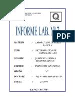 Informe Nº 7 Determinacion de Gamma Del Aire