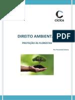 8. Proteção às florestas.docx