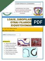 Loasis Difilariosis Otras Filariosis y Esquistosomiasis