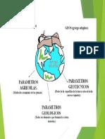 1. Constitucion Interna y Agentes Generadores.