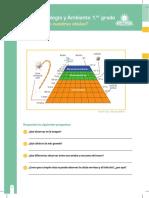 RP-CTA1-K02 - Ficha N°2.docx.pdf