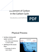 the movement and role of carbon
