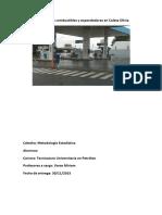 Estudio de Los Combustibles y Expendedores en Caleta Olivia