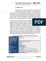 9.0 Empresa consultora Rev 0.pdf