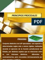 2. PRINCIPIOS PROCESALES