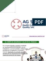 AG Safety HEQ - 17 - Funciones y Responsabilidades Del Comite de SST