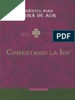 Comentariu-la-Iov-Sf.-Ioan-Gura-de-Aur.pdf