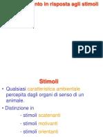 4. Stimoli.pdf