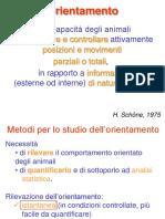 10- Orientamento e navigazione 1.pdf
