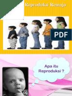 Pembekalan_Kesehatan_Reproduksi.pptx