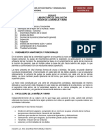194281697-Guia-Practica-N-5-Evaluacion-de-muneca-y-mano.pdf