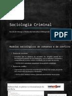 4 Sociologia Criminal Escola de Chicago e Teorias Da Subcultura Delinquente