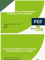 Presentación PVRPS Mutual 2016