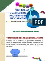 Traduccion del arn procariota y eucariota