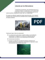 Contaminación Por Los Hidrocarburos