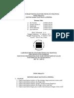 5 Laporan Praktikum Sistem Saraf Dan Panca Indera (1)