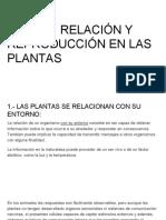 TEMA 9_  RELACIÓN Y REPRODUCCIÓN EN LAS PLANTAS