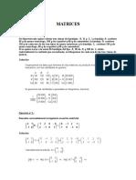 Matrices Sol