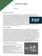 249001028-Ensayo-de-La-Chispa.doc