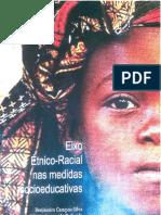 Eixo Étnico-Racial Medidas Socioeducativas