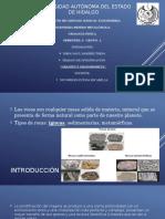 Granito y Granodiorita