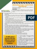 090418 Reporte Diario SSO
