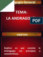 Andragogia PDF