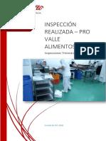 Informe de Inspecciones - Pro Valle Alimentos s.a.c