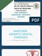 Anatomia y Fisiologia Del Aparato Reproductor Femenino Grupo 2