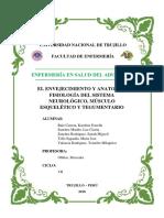 EL ENVEJECIMIENTO.docx