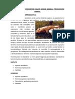 Fundamenta Los Principios en Los Que Se Basa La Producción Animal