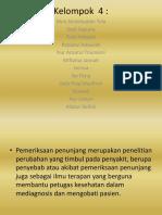 Kelompok  4.pptx