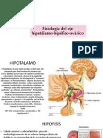 2.-eje neuroendocrino