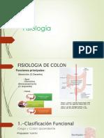 Fisiología Etiologia y Calsificacion