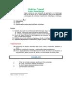 Trabajo Práctico de Formato de Fuente y Párrafos – Nestor Enrique BARRERA VASQUEZ