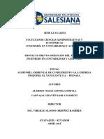 GUIA RECOPILACION DE INFORACION INFORME DE AUDTORIA AMBIENTAL TESIS.pdf