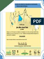 Cetificado_evaluador_RedColsi_Julio Londoño.pdf