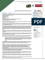 Claves en La Interpretación de Los Resultados Obtenidos Mediante La Tira Reactiva de Orina en Perros y Gatos _ Argos Portal Veterinaria
