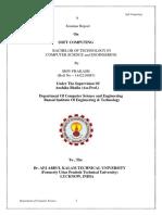 Soft Computing Report (2)