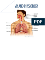 Anatomy and Physiology- Case Study