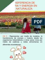 Trasferencia de Materia y Energia en La Naturaleza 6_ Basico