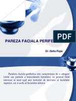 247734627-PAREZA-FACIALA-PERIFERICA.ppt
