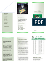 celtics brochure