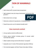 Evolution of Mammals 7