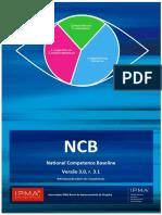 Ncbv3 Ptbr Icbv3 r.3.1 Lr
