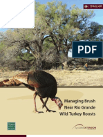 Managing Brush Near Rio Grande Wild Turkey Roosts
