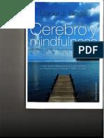 Cerebro y Mindfulnes