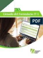 InstructivoLlenadoIT-1
