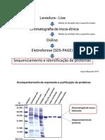 2017 Sequenciamento de Protei769nas