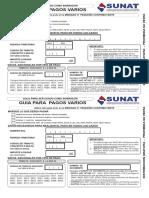 pagos VARIOS sunat.pdf